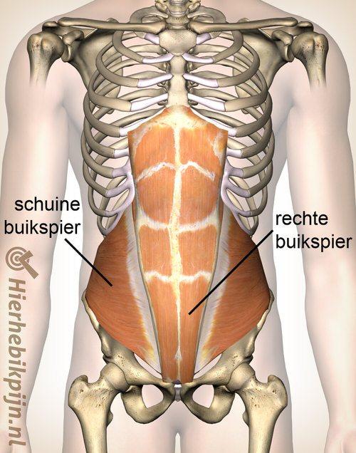 Foto Abdominale spierpijn, buikwand pijn