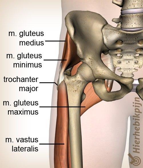 quadriceps ruptuur