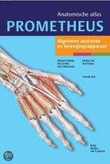 Anatomische Atlas - Prometheus
